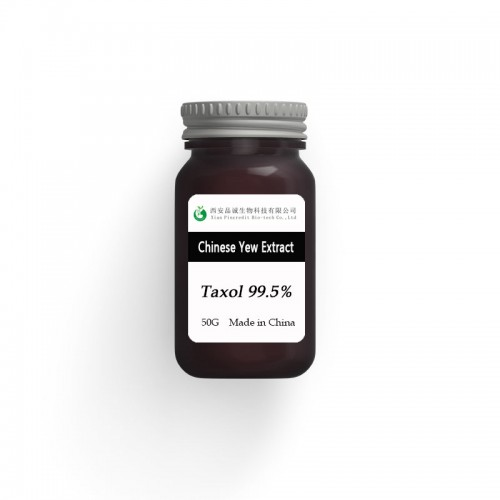 Chinese Yew Extract Taxol 99.5%