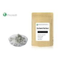 Thermopsis Lanceolata Extract Cytisine 99%